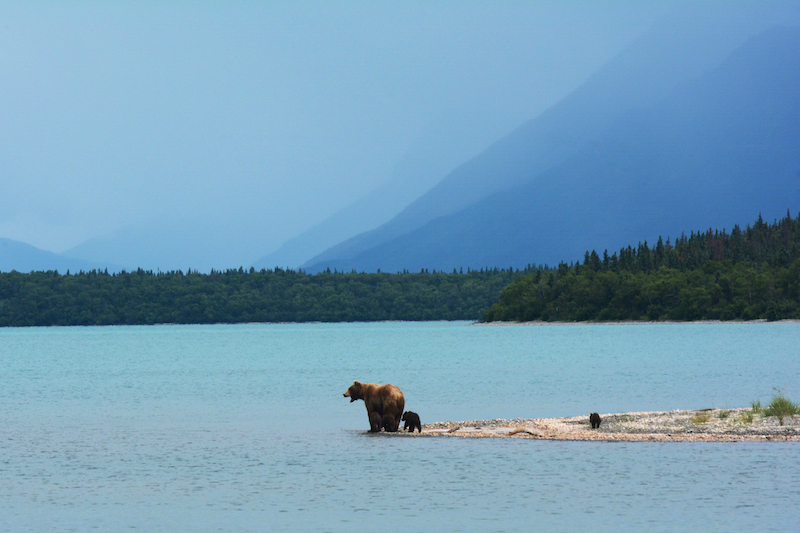 Katmai National Park And Preserve, Alaska