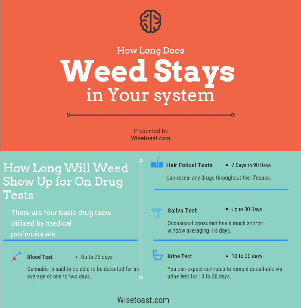How long does weed stays in your system